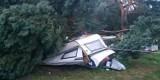Silny wiatr na Pomorzu! W ciągu ostatniej doby strażacy interweniowali 63 razy. W Rekowie Górnym drzewo spadło na samochód i dom