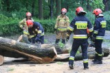 Nawałnica w powiecie wągrowieckim. Kilkadziesiąt wyjazdów straży pożarnej. Jedna osoba jest ranna