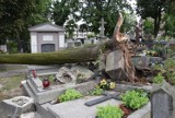 Wichura w Kaliszu. Drzewo przewróciło się na nagrobki [FOTO]