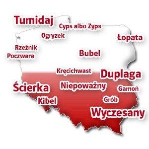 dc05759545f39 Kilka nietypowych nazwisk spotykanych w różnych częściach Polski.