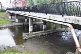 Zobacz co pod mostem Sybiraków, przy Obrze piszczy?
