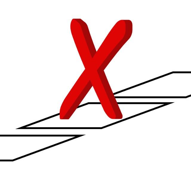Wybory samorządowe już 21 listopada.