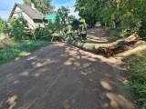 Burze na Pomorzu. 76 interwencji pomorskich strażaków w związku z burzami i pogodą w poniedziałek, 16.08.2021 r. Nikt nie został ranny