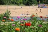 Plaża i baseny nad Wartą w Sieradzu. Niebawem otwarcie. W rzece już robi się tłoczno ZDJĘCIA