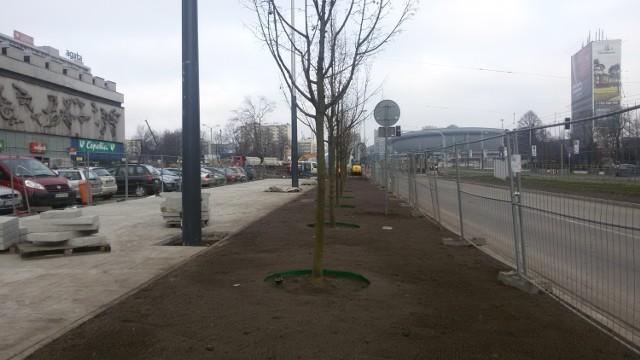 Przebudowa centrum Katowic  Także w ostatnich dniach na fragmencie zachodniej pierzei alei Korfantego (na wschodniej są już od kilku miesięcy) zasadzono drzewa. Łącznie jest ich tu kilkanaście. Niestety, w pełnej krasie zobaczymy je dopiero na wiosnę 2015 roku.