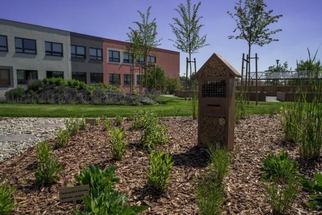 Na Kokoszkach powstał Pozytywny Ogród Edukacyjny. Zobacz zdjęcia >>>