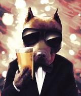 Buldog, Bokser i Golden. Takie piwo zamówisz w pubie Złoty Pies na wrocławskim Rynku