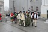 Wadowice. Górale z Zakopanego podarowali choinkę dla muzeum Jana Pawła II. To już tradycja