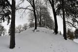 Park Miejski w Zamościu. Wyjątkowe i klimatyczne miejsce na długie zimowe spacery [ZDJĘCIA]