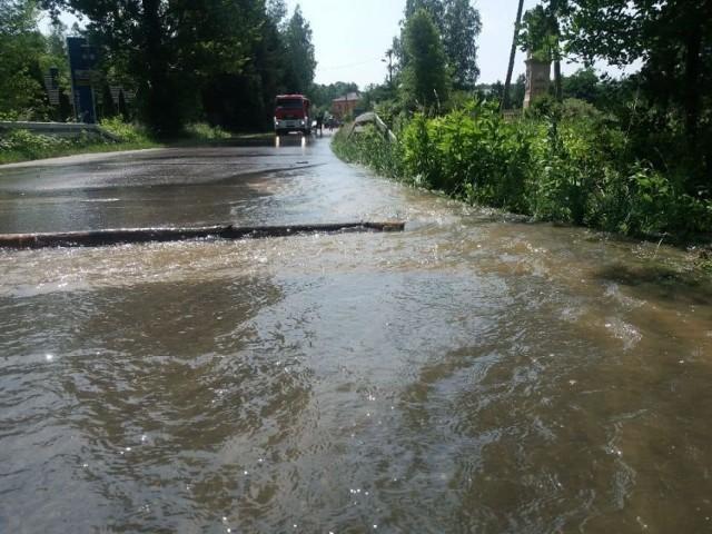 Bobry zniszczyły wały stawu w Przyborowie, zginęły setki ryb