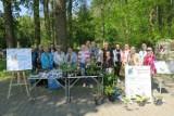 Lasek w Gołuchowie posprzątany. Sadzonki ziół i kwiatów wymienione!