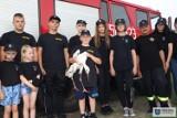 Ratowali młodego bociana. Akcja Młodzieżowej Drużyny Pożarniczej z Rożniatowa gminie Uniejów. Nie ich jedyna ZDJĘCIA