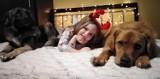 Adoptowane psy i koty z kaliskiego schroniska w świątecznej atmosferze ZDJĘCIA, WIDEO