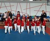 Udany start karateków z naszego powiatu na zawodach w Mosinie
