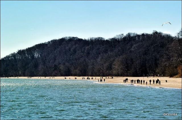 Morze wyrzuciło kolejne zwłoki.