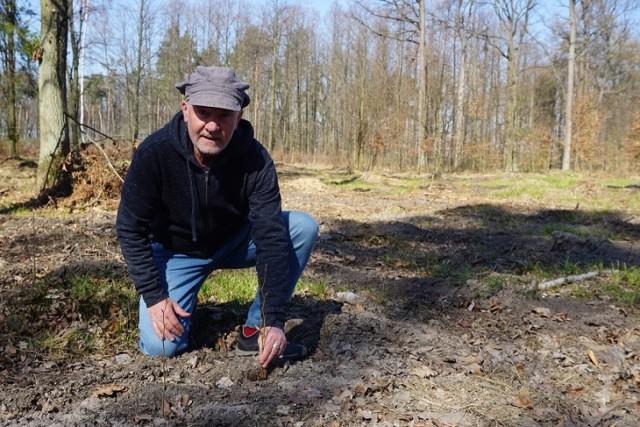Jacek Bożek, prezes Klubu Gaja, zachęca do sadzenia roślin, które zapewnią owadom, ptakom i zwierzętom pożywienie i ochronę