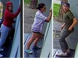 Rozpoznajesz tych nastolatków? Szuka ich policja. Są podejrzani o zdemolowanie historycznego parku