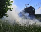 """Groźny pożar w Kostrzynie. Paliła się trawa i zarośla po obu stronach trasy kolejowej do Szczecina, popularnej """"nadodrzanki"""""""