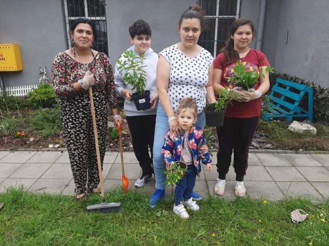 Wspólne sadzenie roślin w ramach Akademii Ogrodnika odbyło się na Niwce w Sosnowcu. W ekologicznej zabawie udział wzięła m.in. pani Sylwia Mirga z rodziną.   Zobacz kolejne zdjęcia. Przesuwaj zdjęcia w prawo - naciśnij strzałkę lub przycisk NASTĘPNE