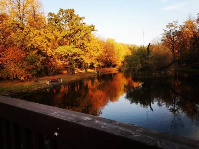 Jesień w Bytomiu na zdjęciach mieszkańców. Zobacz kolejne. Przesuwaj zdjęcia w prawo - naciśnij strzałkę lub przycisk NASTĘPNE >>>