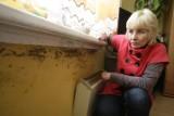 Gdynia: Flesz z przeszłości. 02.03.2011. Grzyb, wilgoć i pleśń w lokalach komunalnych. Mieszkańcy mają tego dość i narzekają na urzędników