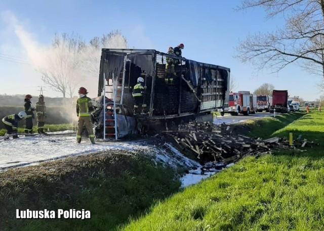 Do tragedii doszło na drodze krajowej nr 31 na odcinku Górzyca - Kostrzyn nad Odrą. Policja otrzymała zgłoszenie w poniedziałek, 26 kwietnia około godz. 7.15. Doszło do zdarzenia drogowego z udziałem czterech pojazdów. Dwa z nich uległy zapaleniu. Kierowca jednego z nich zginął na miejscu.     Ze wstępnych ustaleń policji wynika, że do wypadku doszło po tym, gdy na drodze krajowej nr 31 zatrzymał się volkswagen golf. - Za nim zatrzymała się ciężarówka, przewożąca ładunek drewna. Wtedy w tył naczepy ciężarówki z dużą siłą uderzył hyundai (początkowo policja podawała, że był to mercedes - dop. red.), w którego tył uderzyło jeszcze auto dostawcze - relacjonuje podkom. Magdalena Jankowska, oficer prasowy Komendy Powiatowej Policji w Słubicach. Chwilę później wybuchł pożar. Na miejscu zginął kierowca hyundaia. Płomienie objęły mercedesa, naczepę ciężarówki i auto dostawcze.  Tragedia na drodze Do wypadku doszło na drodze krajowej nr 31 w kierunku Słubic. Tragedia wydarzyła się tuż przed Górzycą, jadąc od strony Kostrzyna.  Widok na miejscu zdarzenia jest makabryczny. Hyundai, który wbił się pod naczepę ciężarówki, został doszczętnie zniszczony. Mocno uszkodzone i nadpalone jest też auto dostawcze, które uderzyło w tył koreańskiego auta.   Obecnie na miejscu trwa sprzątanie pozostałości towaru z naczepy, leżącego na drodze. Utrudnienia mogą potrwać jeszcze kilka godzin.   Po wypadku od naczepy został odpięty ciągnik siodłowy. Odstawiono go dalej, aby nie uległ zapaleniu.   GODZINA 16:50 - koniec utrudnień   Świadkowie: nie było szans na uratowanie kierowcy mercedesa Rozmawialiśmy ze świadkami wypadku. - W momencie, gdy do niego doszło, świeciło bardzo mocne słońce, świeciło prosto w oczy. Wyglądało, jakby ta ciężarówka jechała. Pewnie tak samo wydawało się kierowcy osobowego samochodu- mówi nam jeden ze świadków. - Hyundai błyskawicznie stanął w ogniu. - Nie było szans na uratowanie kierowcy. Temperatura była tak wysoka, że nie dało się nawet podejść w pobliże auta - doda