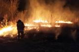 Festiwal głupoty trwa. Tylko w weekend strażacy zanotowali 48 pożarów