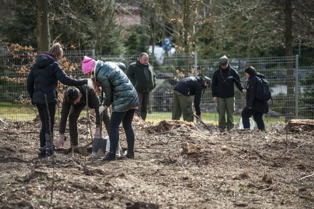 Nowa remiza zajmuje obszar 20 arów. W jej tworzeniu leśnikom z Nadleśnictwa Karnieszewice pomagali wolontariusze, harcerze i młodzież z SOS Wiosek Dziecięcych.