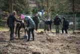 Remiza, ale nie strażacka. Inicjatywa leśników z Karnieszewic da zwierzętom mieszkanie i jedzenie [ZDJĘCIA]