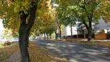 Dziś pierwszy dzień jesieni! Jak wyglądała jesień w minionych latach w powiecie obornickim? [ARCHIWALNE ZDJĘCIA]