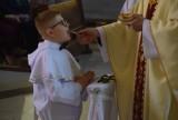 Pierwsza Komunia Święta w parafii pw. bł. Bogumiła w Gnieźnie