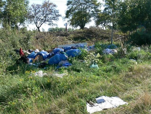 Tę stertę śmieci wypatrzoną przez jednego z naszych czytelników udało się już uporządkować