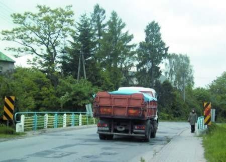 Mieszkańcy ulicy Borowcowej uskarżają się na ciężarówki jeżdżące tym traktemfot. Agnieszka Filipowicz