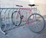 Tuszyńscy policjanci odzyskali skradziony rower i zatrzymali złodzieja