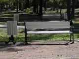 Park Staromiejski Żory: Zmienia się nasz park...