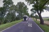 Drogę krajową nr 22 między Kostrzynem a Słońskiem czeka duży remont. Warunkiem jest wycinka drzew
