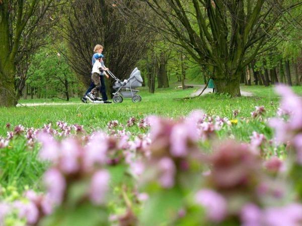 we wrześniu warszawiacy będą mogli udać się na spacer po parku w Natolinie