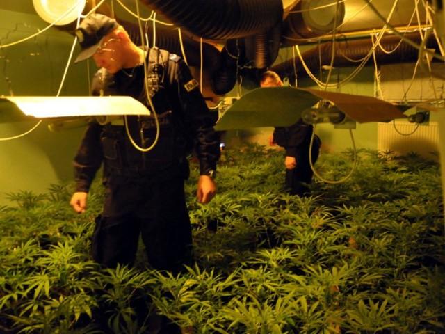 Policja, Warszawa. Funkcjonariusze zabezpieczyli tony narkotyków i namierzyli gigantyczne fabryki amfetaminy