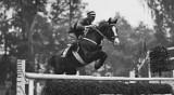 Błaszkowscy olimpijczycy. Wybitni przedwojenni jeźdźcy, zasłużeni wojskowi ARCHIWALNE ZDJĘCIA