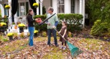 Prace ogrodowe do wykonania przed nadejściem zimy