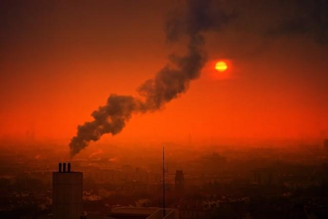 Na planszach pokazujemy, ile zgonów można uniknąć w naszych miastach, gdyby poprawić jakość powietrza.   KLIKNIJ KOLEJNE ZDJĘCIE/PRZESUŃ KURSOR W PRAWO
