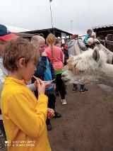 Półkolonie dla dzieci z gminy Mieścisko. Najmłodsi odwiedzili wiele ciekawych miejsc