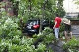 Wichura przeszła przez Warszawę. Połamane drzewa, ponad 360 interwencji, kilkadziesiąt tysięcy osób bez prądu na Mazowszu