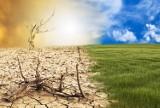 Prognoza klimatyczna na 2070 r. Naukowcy przypuszczają, że za 50 lat będą nas nękać ogromne upały i susza