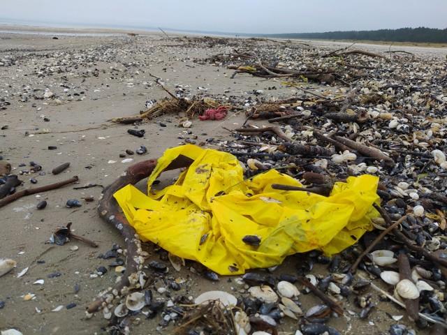 Po jednym ze sztormów odwiedziliśmy z aparatem plażę w Świnoujściu. W dzielnicy Warszów na wyspie Wolin, plaża, choć chętnie uczęszczana jest bez dostępu do komercyjnych usług. Nawet w szczecie sezonu jej zanieczyszczenie jest znikome. Mówiąc wprost i co najmniej trywialnie, nie walają się po niej śmieci. Czas, w którym wykonywaliśmy zdjęcia był bardzo odległym od letniego sezonu. Wyrzucone przez morze śmieci dryfują w nim okrągły rok. To przede wszystkim ogromna ilość (piszemy ilość, bo na sztuki trudno byłoby oszacować) słomek od napojów! Skąd przybyły i dlaczego znalazły się w morzu? To niestety nasze dzieło.