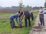 Gostyń. Wspólnymi siłami posadzili drzewa. To ich kolejna inicjatywa. Bodzewo pięknieje [ZDJĘCIA]