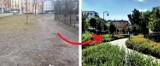 Metamorfozy praskich podwórek w Warszawie. Z betonu w zieleń. Tak było kiedyś, tak jest dzisiaj