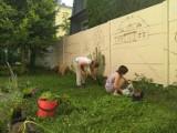 Przy Hufcu ZHP powstaje mural połączony z ekologicznym Polskim Ogrodem