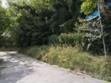 Ruszają prace przy zabezpieczaniu osuwiska w Tarnobrzegu. Uwaga na zmiany w ruchu
