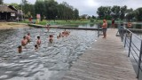 Warsztaty pływackie w Pniewach już się zakończyły